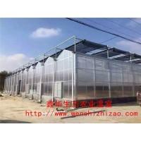 设计生产安装 智能阳光板温室大棚  定制智能大棚铝材