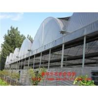 塑料薄膜温室大棚 薄膜温室大棚安装价格 山东鑫华