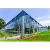 厂家直销 玻璃温室大棚 文洛式玻璃温室大棚 玻璃温室厂家