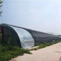 厂家销售 蔬菜日光温室 日光温室大棚造价 节能日光温室大棚