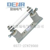 XRNT1-12/80A高压限流熔断器