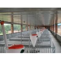 山东自动化料线现货直供/沧州万晟畜牧设备有限公司品质保证