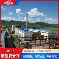山东临清化工厂耐腐板 asp塑钢复合板 复合防腐板耐酸碱腐蚀