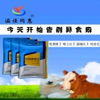 牛玩舌头吃土喝尿