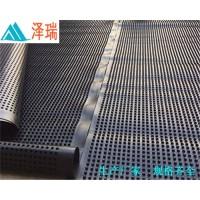 天津车库蓄排水板(2公分)塑料排水板