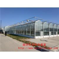 高科技玻璃温室 玻璃温室景观 大型玻璃温室 鑫华设计建造