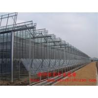 钢结构玻璃温室 文洛式玻璃温室大棚 全国各式温室工程承建