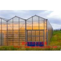 文洛式阳光板温室 pc阳光板温室建设 阳光板温室厂家报价表