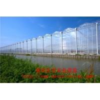 东北温室工程建设 智能阳光板温室大棚 新型阳光板餐厅温室定做