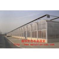 現貨供應小型陽光板溫室花棚 全自動花卉種植溫室 山東廠家報價
