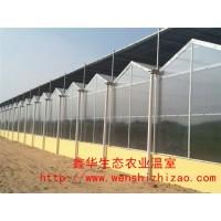 直銷陽光板溫室 花卉蔬菜種植溫室大棚 智能pc板溫室搭建