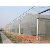 單棟薄膜溫室 薄膜溫室哪家好 山東鑫華專業溫室鑄造商