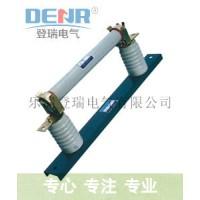 登瑞電氣RN1-6/2A,RN1-6/2A高壓熔斷器