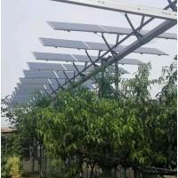 厂家批发晶天光伏组件农光互补并网光伏发电300W单晶太阳能板